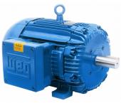 W21Xd Motor à Prova de Explosão IR1
